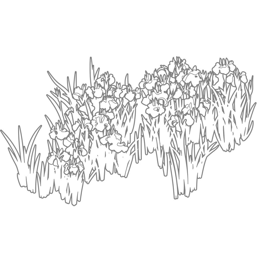 燕子花図:グレー線バージョン